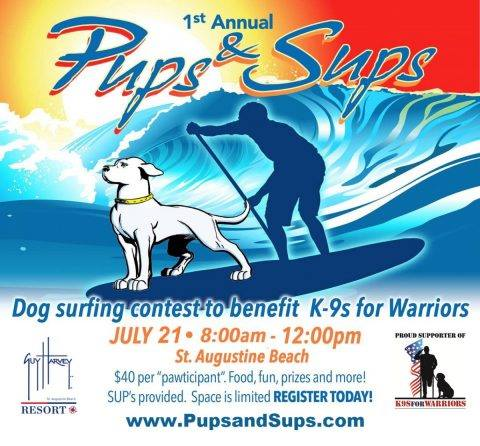 Pups & Sups, pups and sups, st. augustine Beach, guy harvey resort, paddle board events, pet friendly events, avid design group, st. augustine beach pier